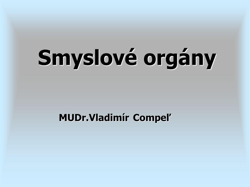 Smyslové orgány MUDr.Vladimír Compeľ