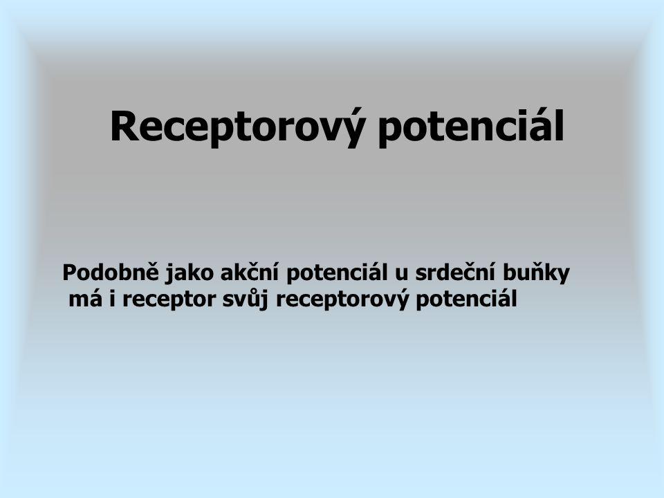 Receptorový potenciál