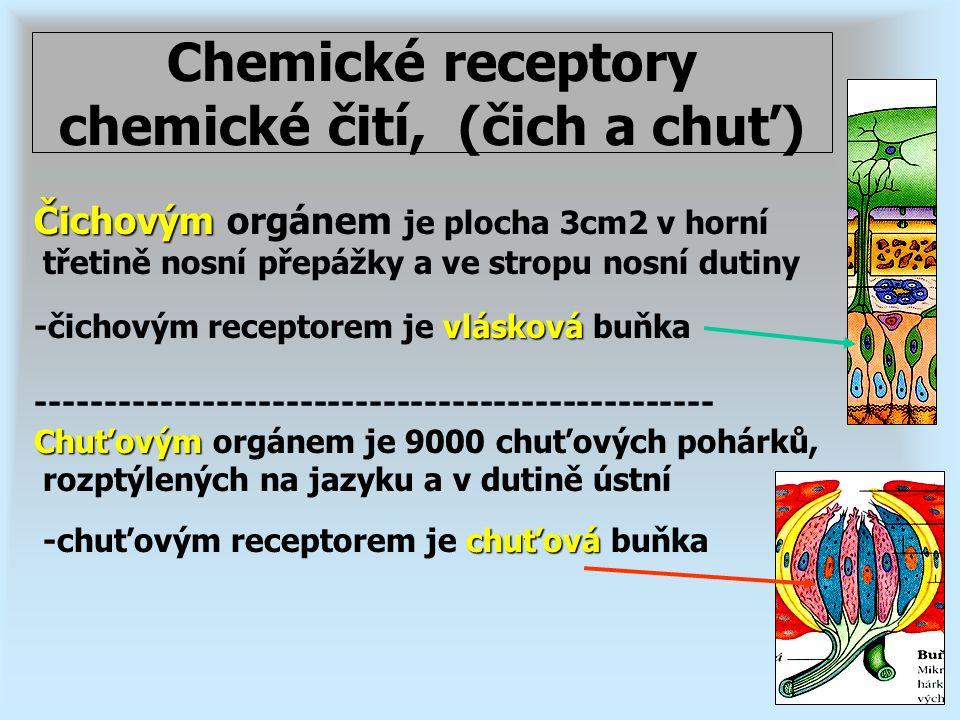 Chemické receptory chemické čití, (čich a chuť)