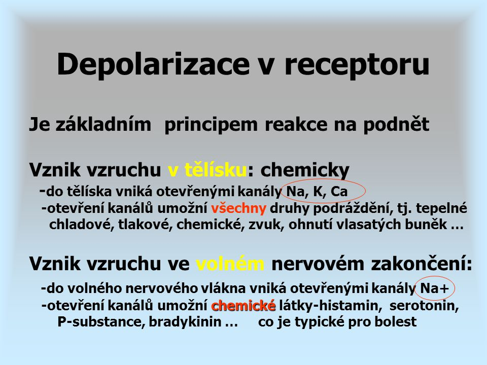 Depolarizace v receptoru