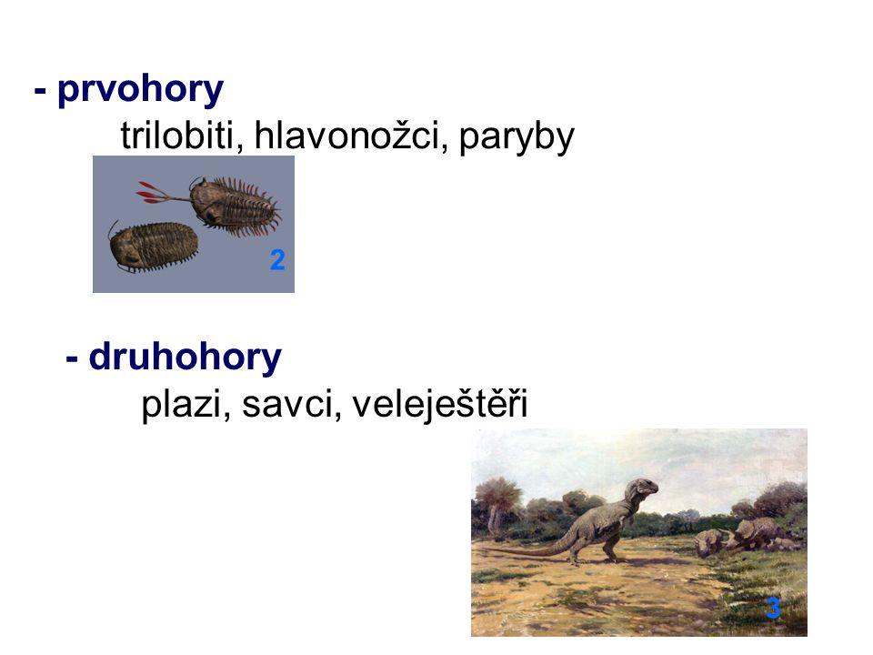 trilobiti, hlavonožci, paryby