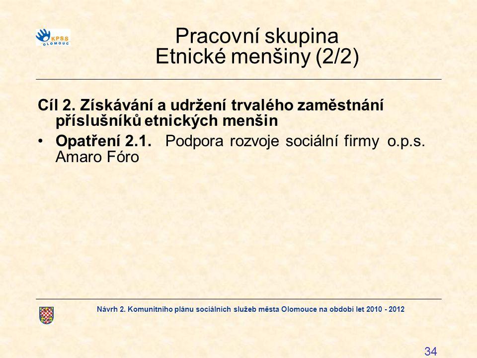 Pracovní skupina Etnické menšiny (2/2)