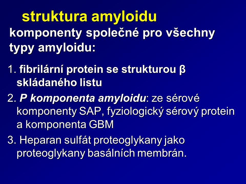 struktura amyloidu komponenty společné pro všechny typy amyloidu: