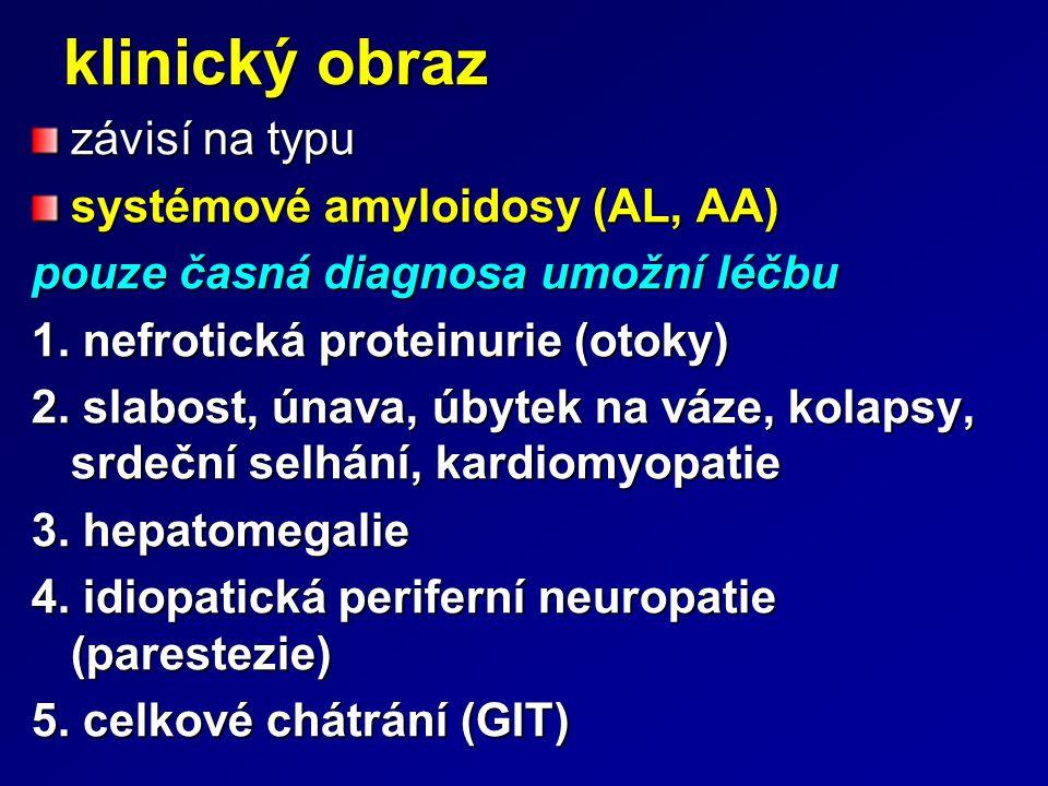 klinický obraz závisí na typu systémové amyloidosy (AL, AA)