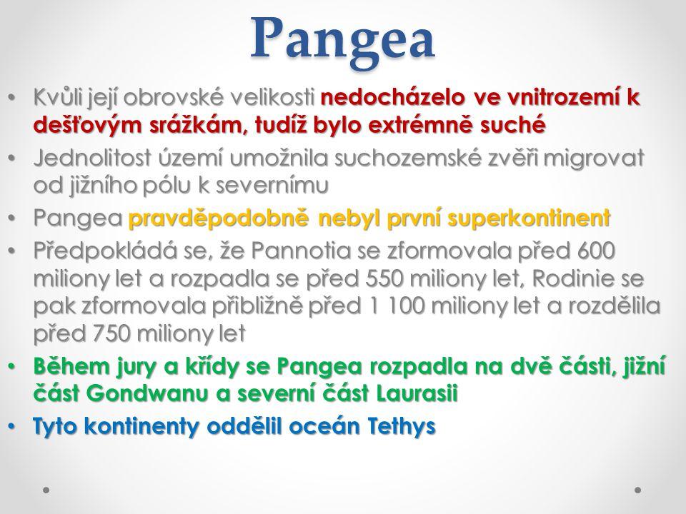 Pangea Kvůli její obrovské velikosti nedocházelo ve vnitrozemí k dešťovým srážkám, tudíž bylo extrémně suché.