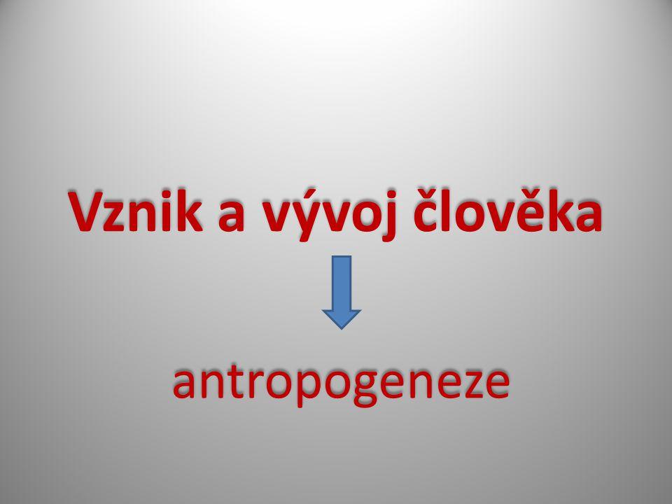 Vznik a vývoj člověka antropogeneze