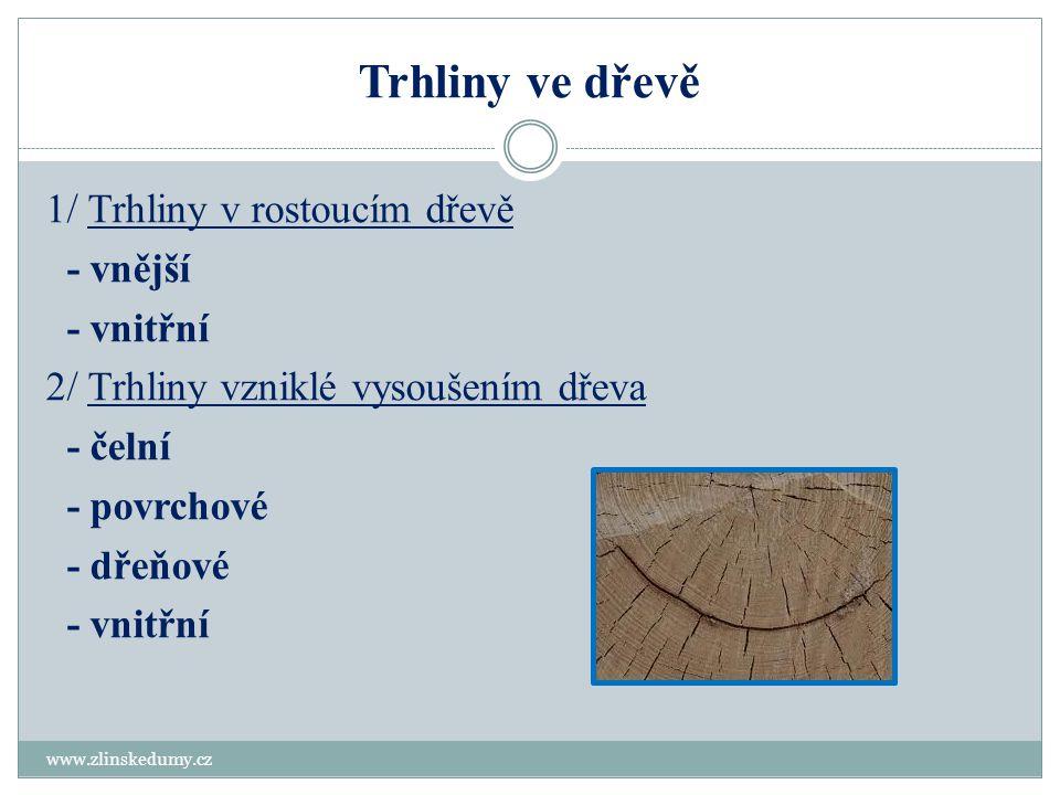 Trhliny ve dřevě 1/ Trhliny v rostoucím dřevě - vnější - vnitřní 2/ Trhliny vzniklé vysoušením dřeva - čelní - povrchové - dřeňové