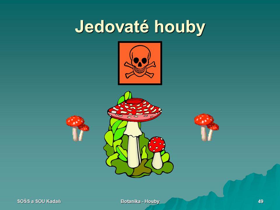 Jedovaté houby SOŠS a SOU Kadaň Botanika - Houby