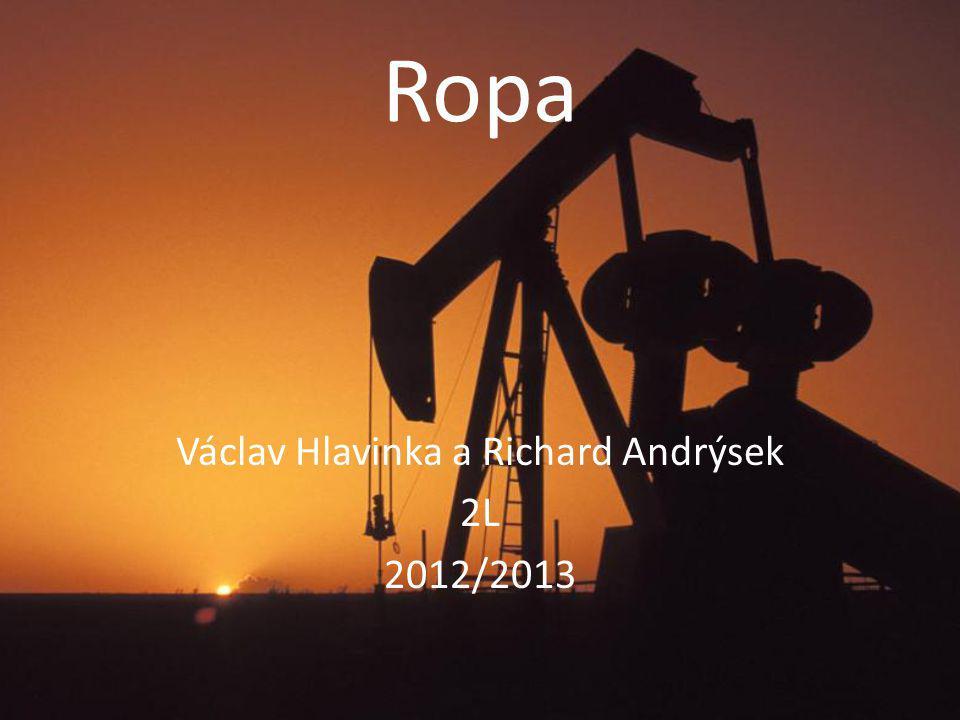 Václav Hlavinka a Richard Andrýsek 2L 2012/2013