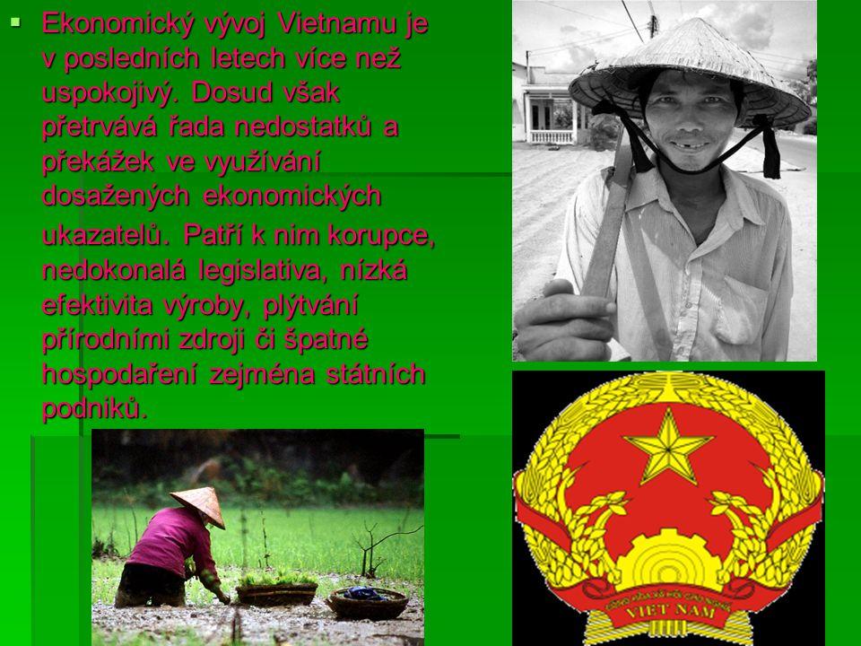 Ekonomický vývoj Vietnamu je v posledních letech více než uspokojivý