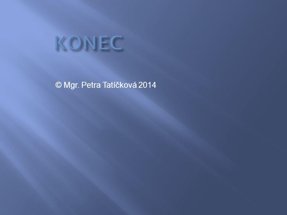 KONEC © Mgr. Petra Tatíčková 2014