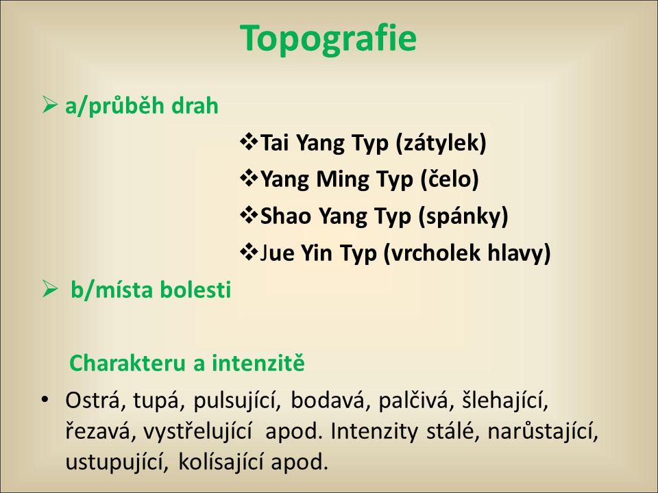 Topografie a/průběh drah Tai Yang Typ (zátylek) Yang Ming Typ (čelo)