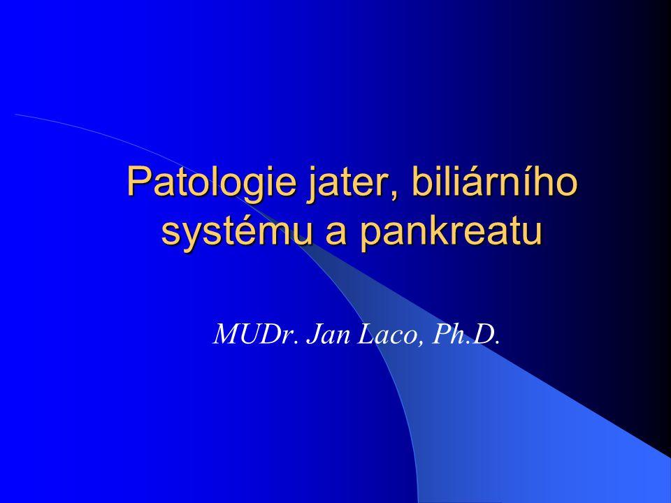 Patologie jater, biliárního systému a pankreatu