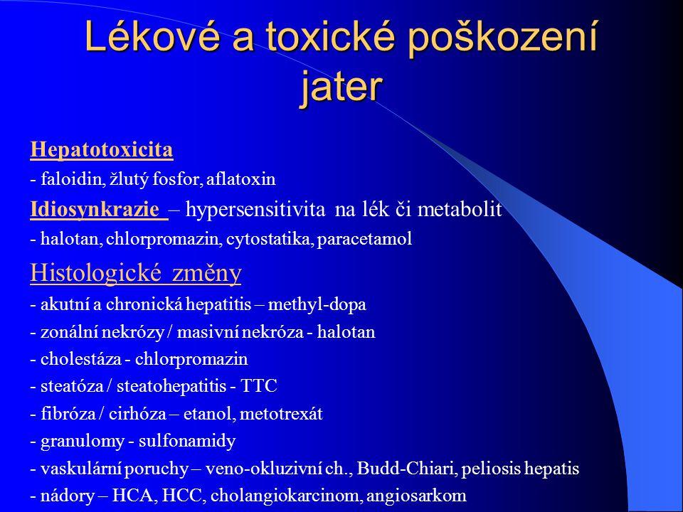 Lékové a toxické poškození jater