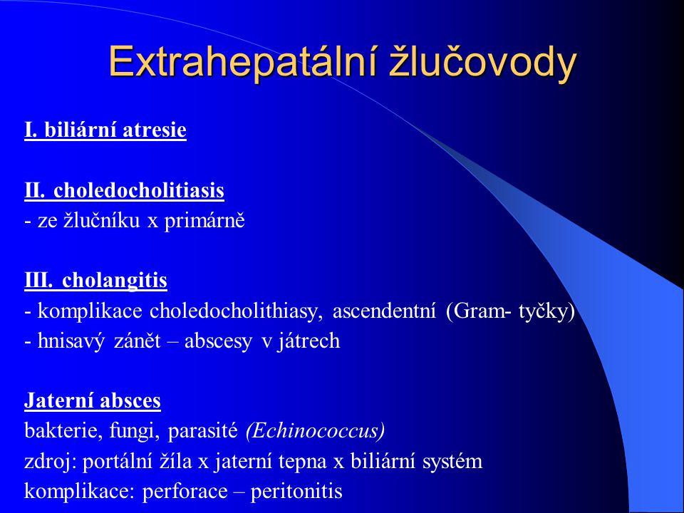 Extrahepatální žlučovody