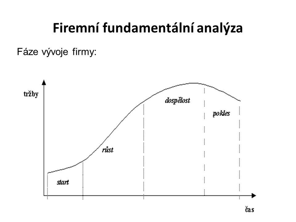Firemní fundamentální analýza