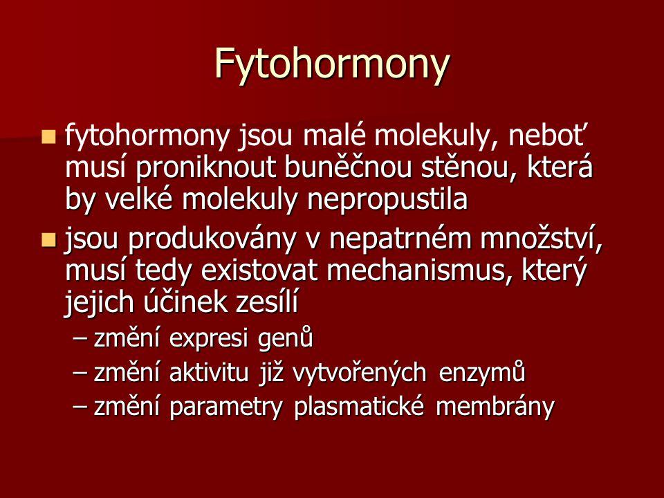 Fytohormony fytohormony jsou malé molekuly, neboť musí proniknout buněčnou stěnou, která by velké molekuly nepropustila.