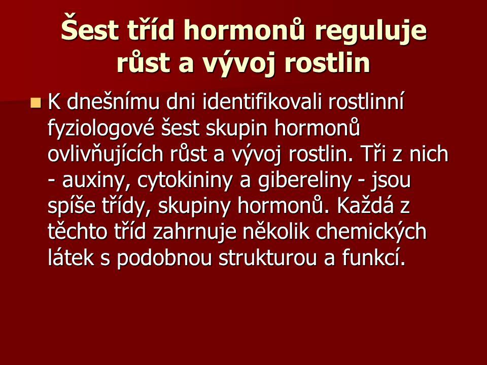 Šest tříd hormonů reguluje růst a vývoj rostlin