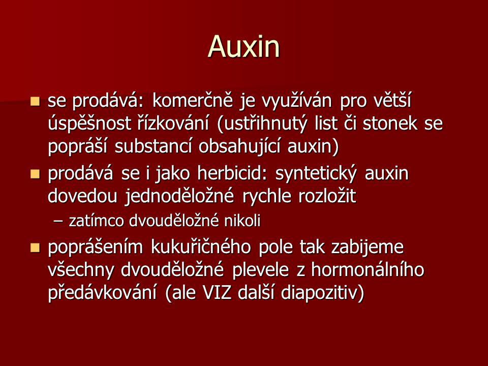 Auxin se prodává: komerčně je využíván pro větší úspěšnost řízkování (ustřihnutý list či stonek se popráší substancí obsahující auxin)