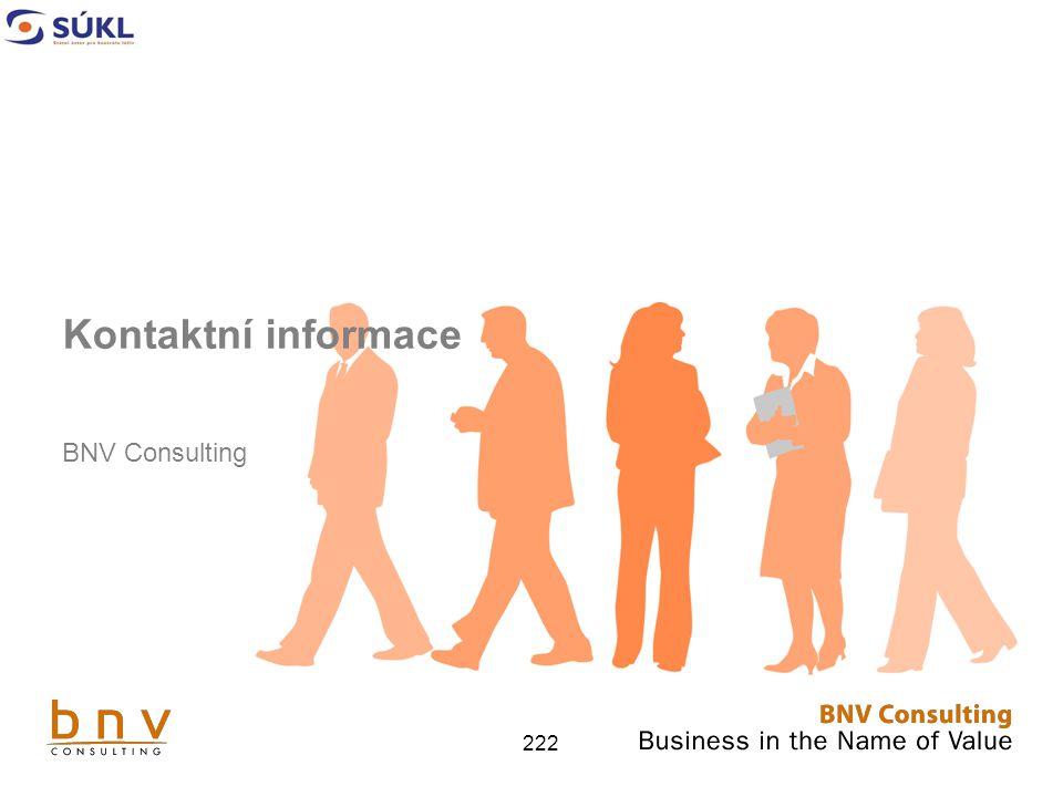 Kontaktní informace BNV Consulting