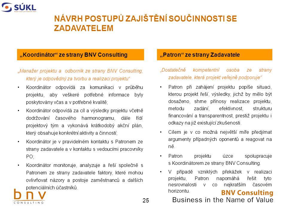 """""""Koordinátor ze strany BNV Consulting """"Patron ze strany Zadavatele"""
