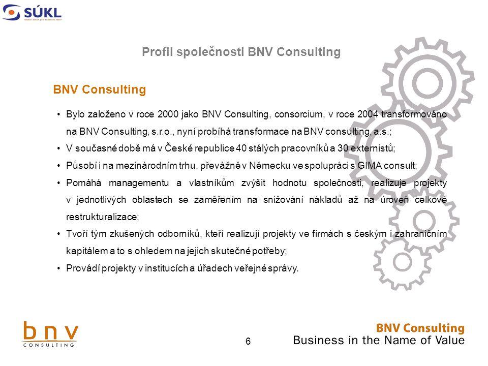 Profil společnosti BNV Consulting