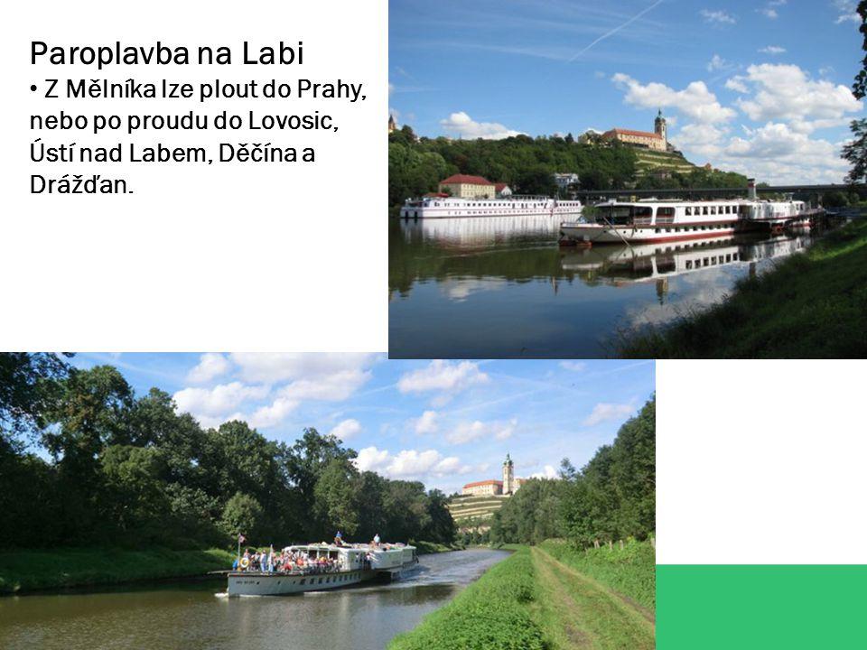 Paroplavba na Labi Z Mělníka lze plout do Prahy, nebo po proudu do Lovosic, Ústí nad Labem, Děčína a Drážďan.