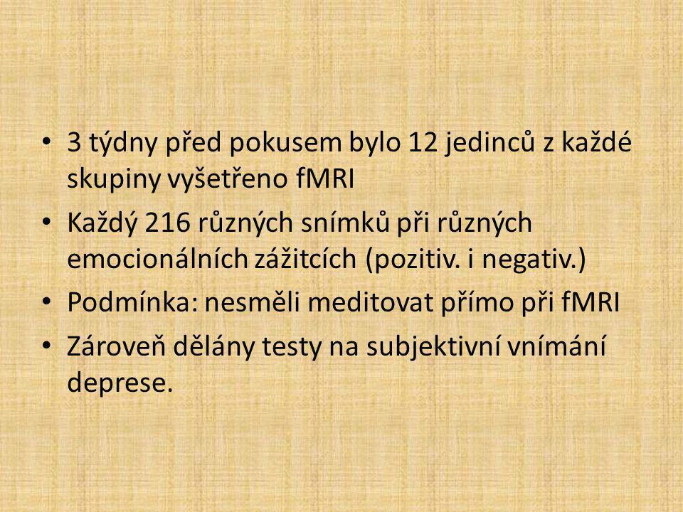 3 týdny před pokusem bylo 12 jedinců z každé skupiny vyšetřeno fMRI