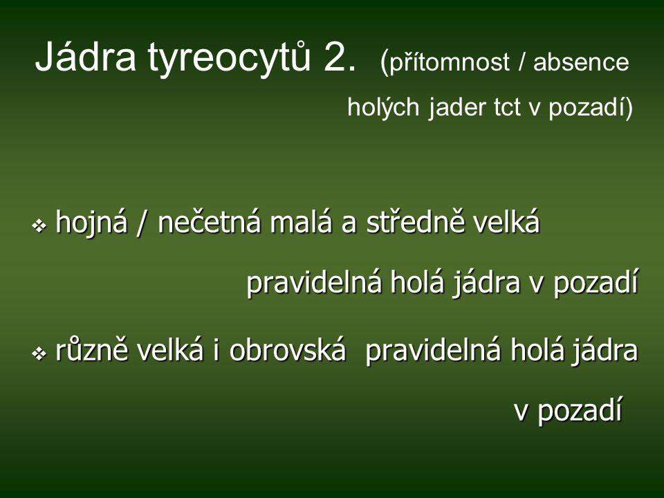 Jádra tyreocytů 2. (přítomnost / absence holých jader tct v pozadí)