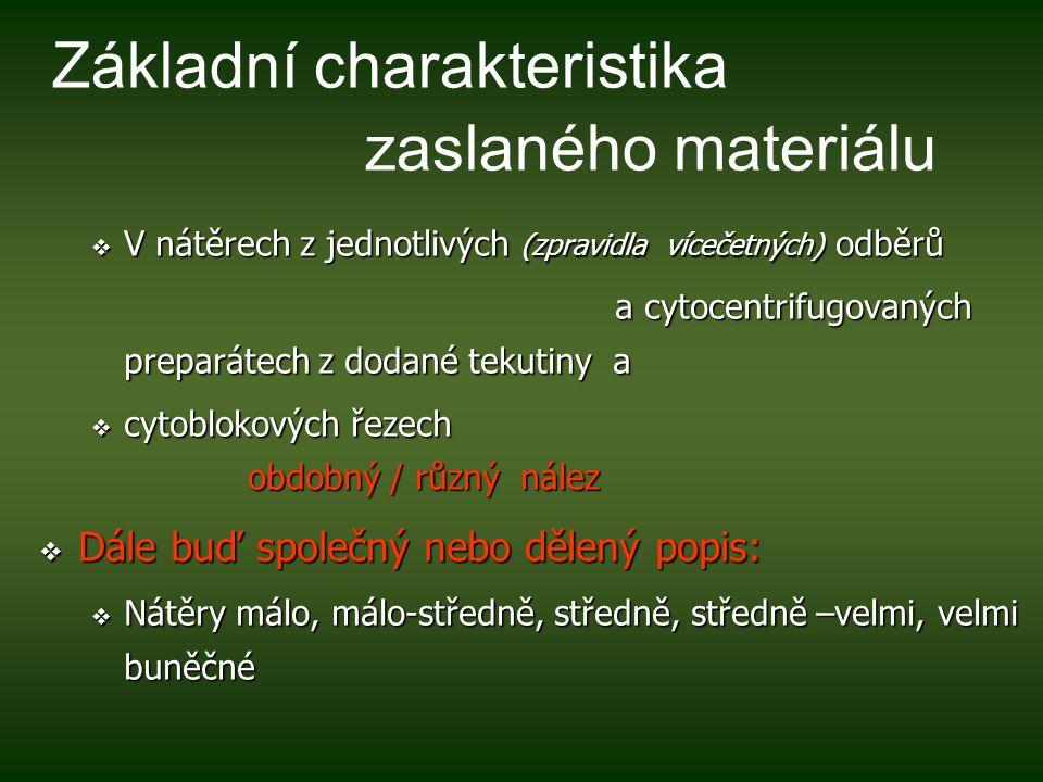 Základní charakteristika zaslaného materiálu
