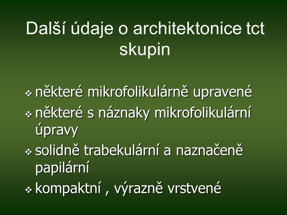 Další údaje o architektonice tct skupin