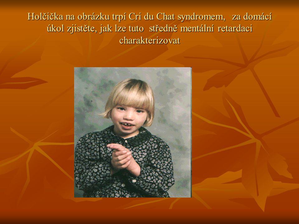 Holčička na obrázku trpí Cri du Chat syndromem, za domácí úkol zjistěte, jak lze tuto středně mentální retardaci charakterizovat