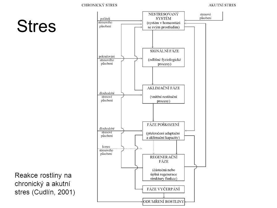 Stres Reakce rostliny na chronický a akutní stres (Cudlín, 2001)