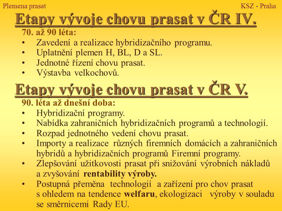 Etapy vývoje chovu prasat v ČR IV.