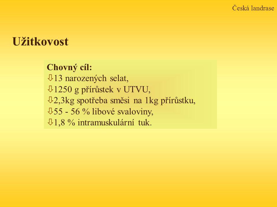Užitkovost Chovný cíl: 13 narozených selat, 1250 g přírůstek v UTVU,