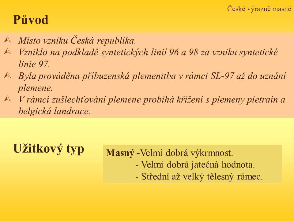 Původ Užitkový typ Místo vzniku Česká republika.