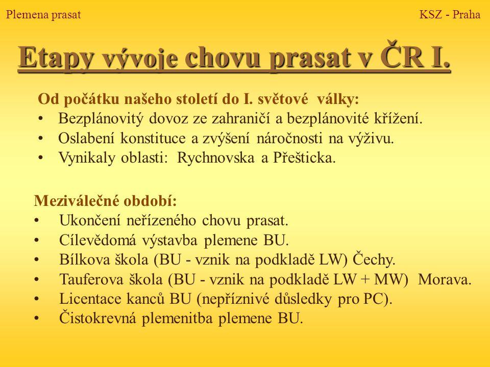 Etapy vývoje chovu prasat v ČR I.
