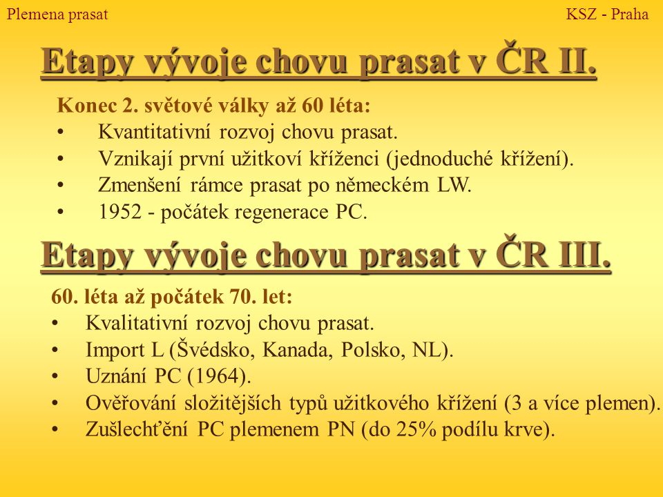 Etapy vývoje chovu prasat v ČR II.