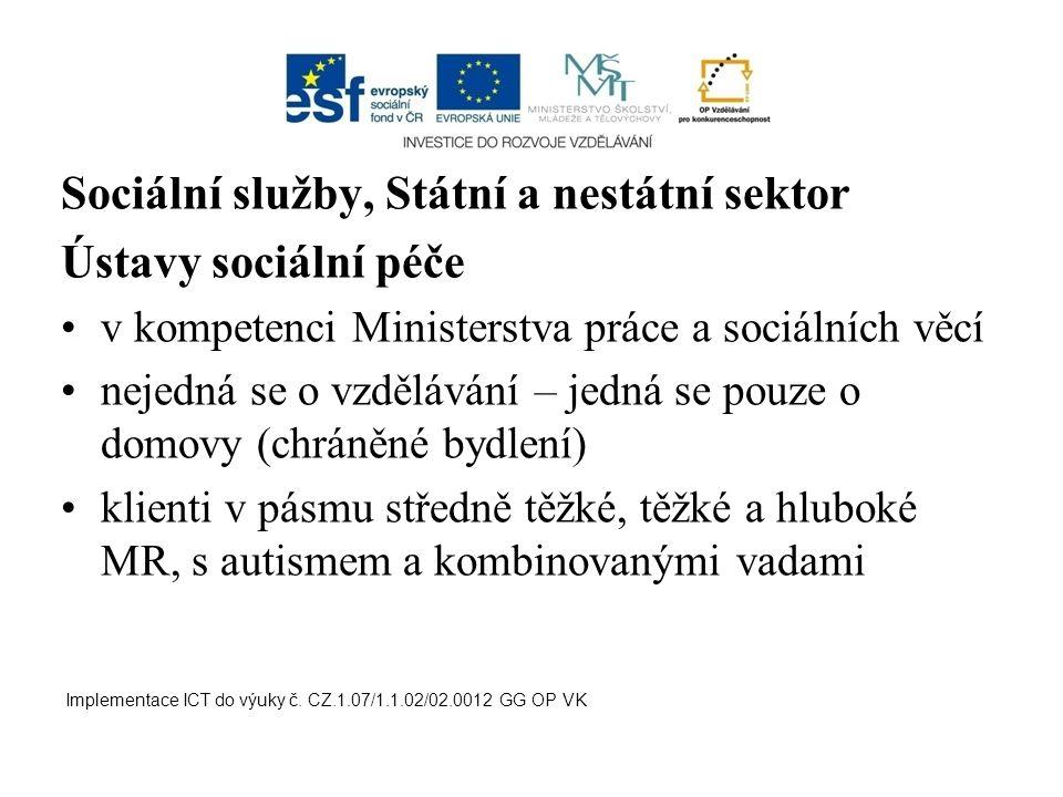 Sociální služby, Státní a nestátní sektor Ústavy sociální péče
