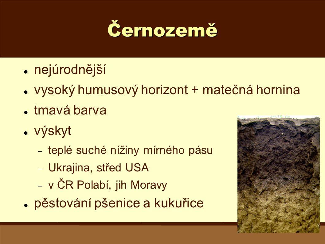 Černozemě nejúrodnější vysoký humusový horizont + matečná hornina