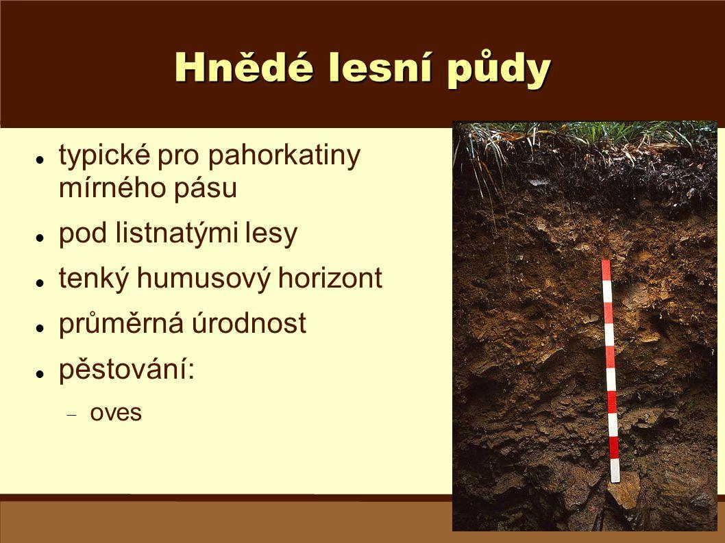 Hnědé lesní půdy typické pro pahorkatiny mírného pásu
