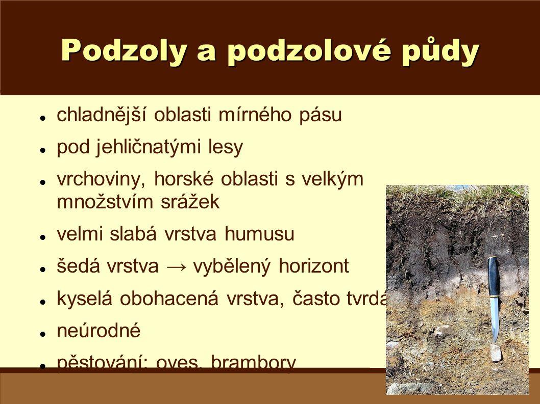Podzoly a podzolové půdy