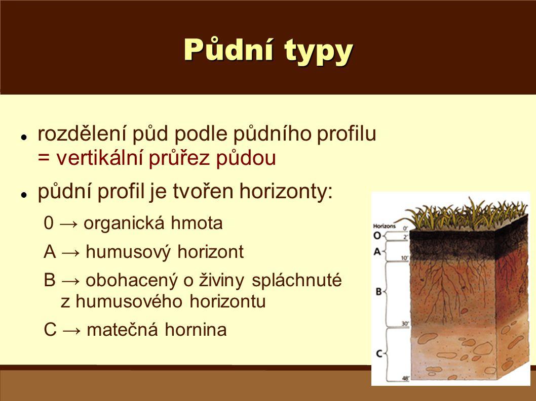 Půdní typy rozdělení půd podle půdního profilu = vertikální průřez půdou. půdní profil je tvořen horizonty:
