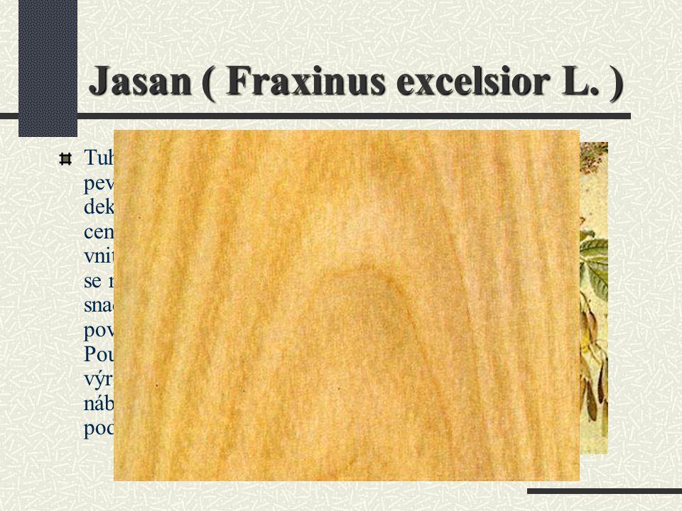 Jasan ( Fraxinus excelsior L. )