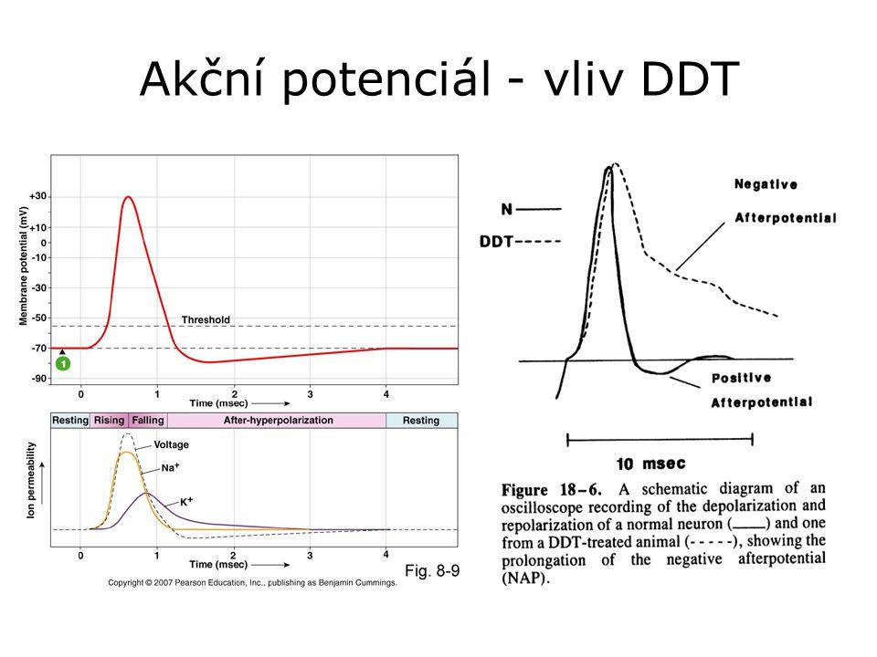 Akční potenciál - vliv DDT