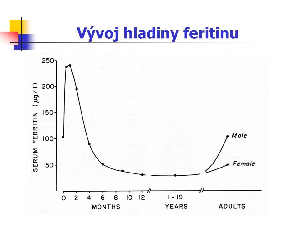 Vývoj hladiny feritinu