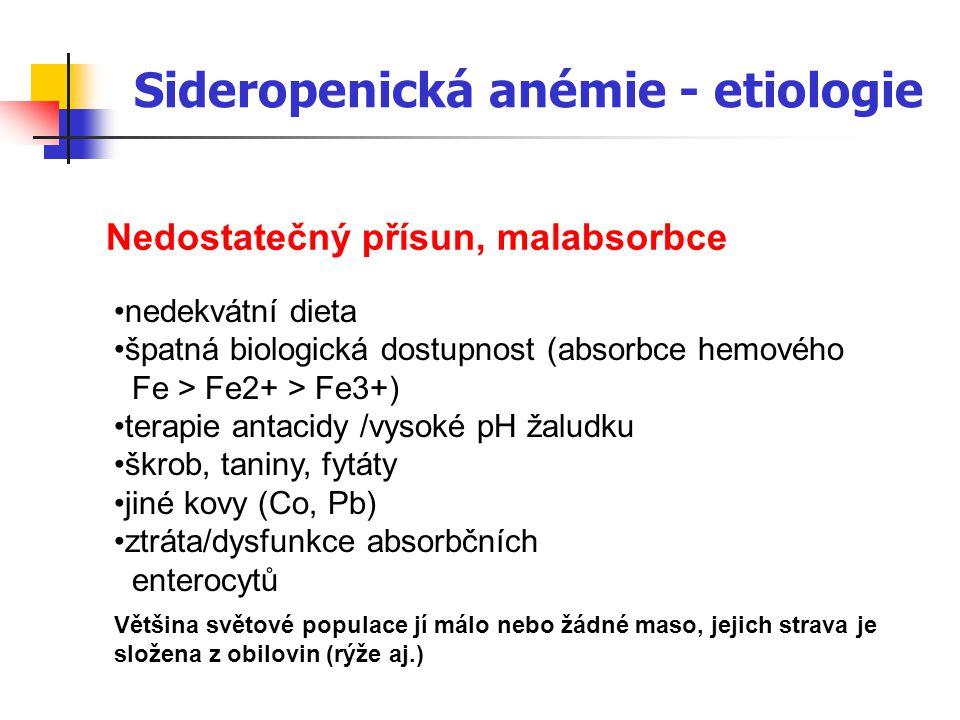 Sideropenická anémie - etiologie
