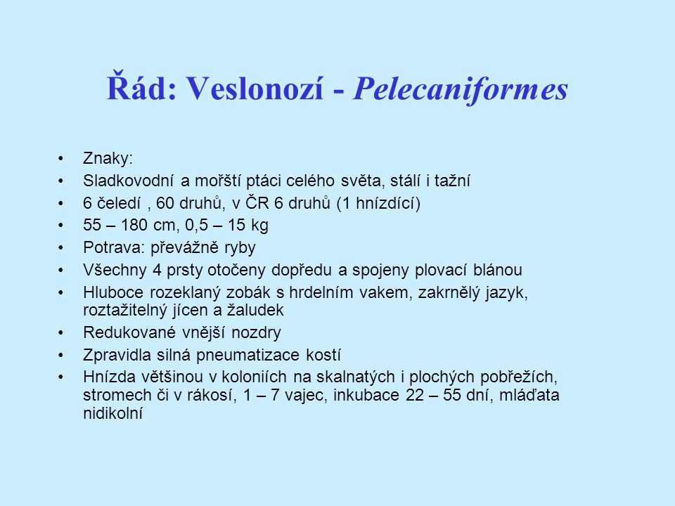 Řád: Veslonozí - Pelecaniformes