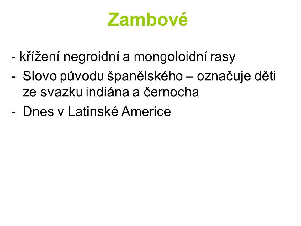 Zambové - křížení negroidní a mongoloidní rasy