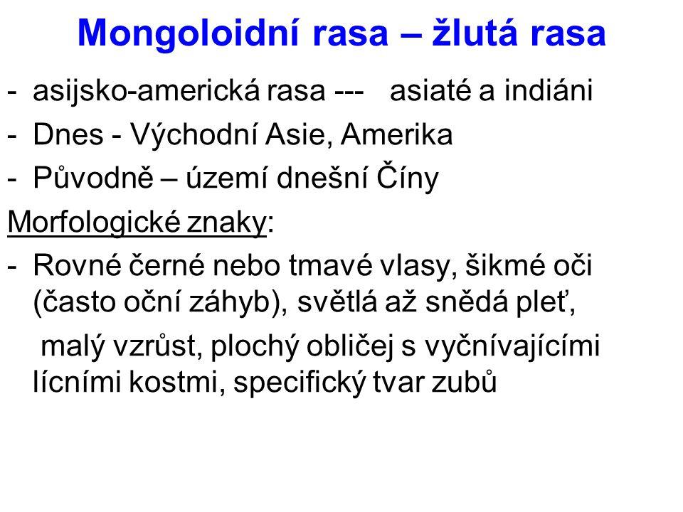 Mongoloidní rasa – žlutá rasa